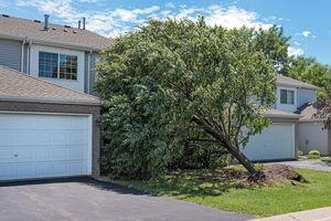 Gebäudeversicherung schützt bei Sturmschäden durch umgestürzte Bäume